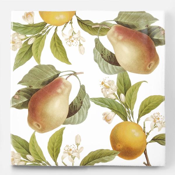 アンティークの図版のオレンジや洋梨などの果物のイラストのイメージを施したタイルです。壁タイル、床タイル、Pタイルとしてご利用頂けます。果物の他のシリーズのタイルや白いタイル等と組み合わせてオーダー頂く事が可能です。