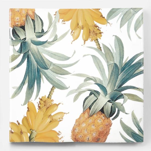 アンティークの図版のパイナップルやバナナなどの果物のイラストのイメージを施したタイルです。壁タイル、床タイル、Pタイルとしてご利用頂けます。果物の他のシリーズのタイルや白いタイル等と組み合わせてオーダー頂く事が可能です。