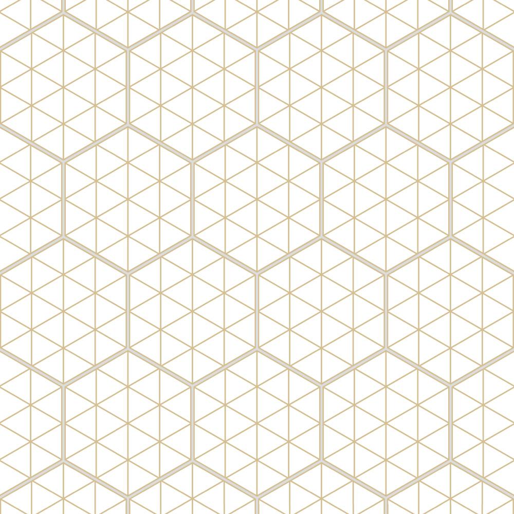 ヘキサゴンに和柄の幾何図形を落とし込んんだデザインタイル。白地にベージュ色の使いやすい配色で、様々なシーンでご利用頂けます。同柄のサイズの違いで2パターンからお選びいただけます。